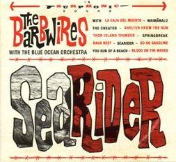 Searider-0