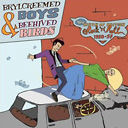 Brylcreemed Boys & Beehived Birds-The Birth Of British Rock`n`Roll 4CD Boxset-0
