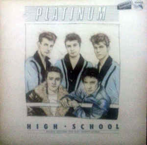 Platinium High School-0