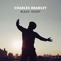 Black Velvet-0