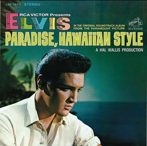 Paradise Hawaii Style-0